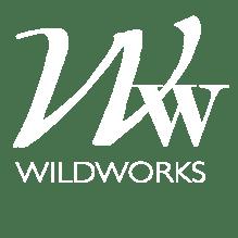 WildWorks Art Debbie Snider